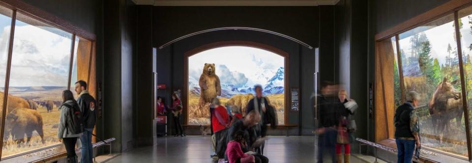 Museum Passes